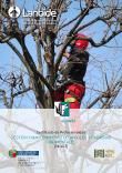 Portada de Gestión y mantenimiento de árboles y palmeras ornamentales